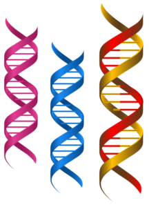 Show us your DNA